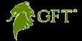 GFT Asia (GFT Markets)